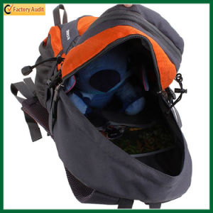 Fashion Outdoor Sport Bag Camping Backpack Hiking Backpack (TP-HGB017) pictures & photos