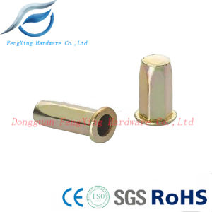 Global Hot Sale 10mm Blind Insert Rivet Nut pictures & photos