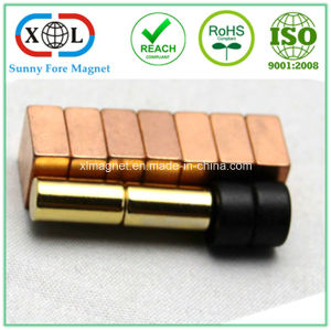 Gold Copper Epoxy Plating Rare Earth Magnet pictures & photos