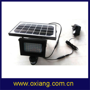 Wireless PIR IP Camera Solar PIR Sensor Light Camera pictures & photos