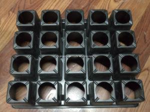 20 Cells Black PS Garden Black Tray pictures & photos