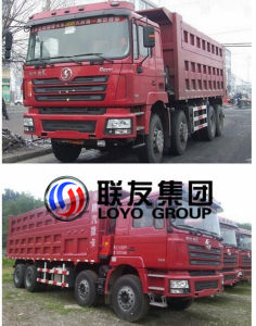 2017 HOWO Latest Type 8*4 Tipper Dump Truck 310HP for Hot Sale pictures & photos