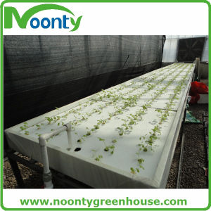 Assorted System Hydroponic for Sale pictures & photos