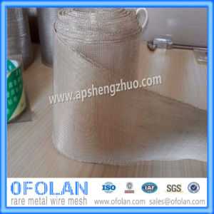 (AG>99.99%) Battery Silver Wire Mesh 100mm*100mm Stock Supply (30mesh) pictures & photos