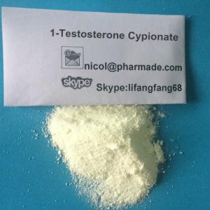 1-Testosterone Cypionate Powder 1-Testosterone Cypionate Dhb Powder pictures & photos
