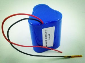 Rechargeable LiFePO4/Ni-CD/Ni-MH Lithium Battery Pack for Emergency Lighting pictures & photos