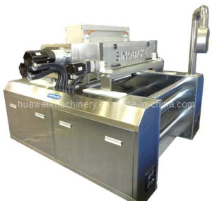 Wire Cut Cookie Machine (HJ-400, HJ-600) pictures & photos