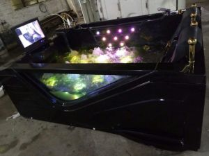 Acrylic Hot Tub for Two Person (5216) pictures & photos
