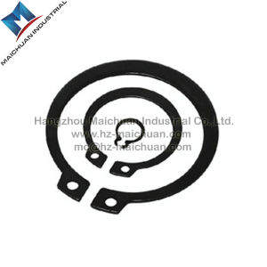 Retaining Ring / Circlip (DIN471 / DIN472 / DIN6799) pictures & photos