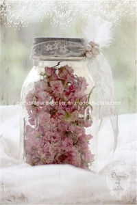 Transparent Candy Glass Jar for Wedding/Party/Baby Shower Decoration