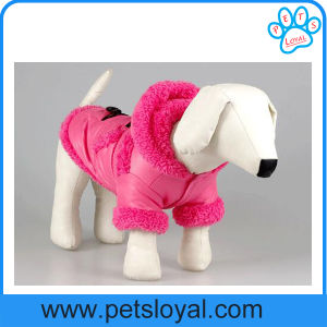 Manufacturer Wholesale Pet Dog Clothes Coat Pet Accessories pictures & photos