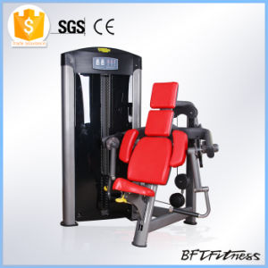Body Building Gym Equipment for Sale, Fitness Equipment Gym Bft-3007 pictures & photos