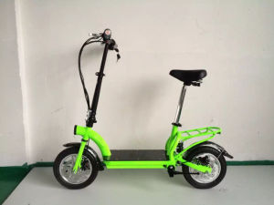 Folding Portable 36V 300W Electric Bike