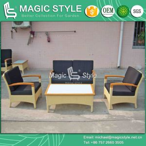 Rattan Sofa Set with Cushion Outdoor Sofa Set (Magic Style) pictures & photos