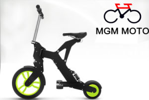 Hot Sale New Model Folding Electric Bicycle pictures & photos