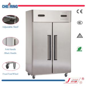 Cheering 1.5LG Double Temperature Type High Quality 2 Door Stainless Steel Upright Refrigerator Freezer with Ce pictures & photos