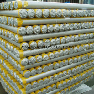 PE Tarpaulin in Rolls PE Tarpaulin Sheet Waterproof PE Tarps Cover pictures & photos