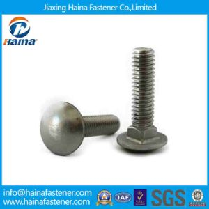 1/2-in-13 X 8-in 316 Stainless Steel Mushroom Head Carriage Bolt pictures & photos