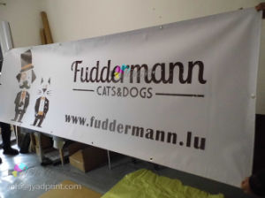 Custom Printing Cheap Outdoor Advertising PVC Vinyl Banner Material pictures & photos