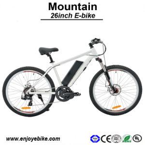 Mountain Electric Bike Bicycle E-Bike E-Bicycle Motorcycle Lithium Battery 9ah E Bike Electric Bicycle (PE-TDE07Z-2)