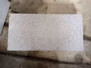 Bushhammer G654 Padang Dark Granite Tiles for Outside Project pictures & photos