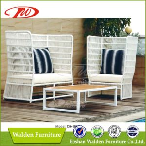 White Rattan Outdoor Furniture (DH-868) pictures & photos