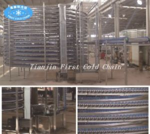 Hotsell Spiral Cooling Conveyor / IQF Spiral Freezer pictures & photos