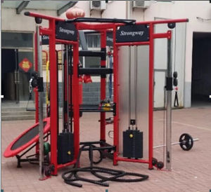 Fitness Equipment / Gym Equipment / Life Fitness Equipment -Synergy 360xs pictures & photos