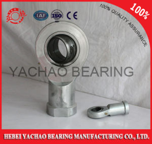 Phs Series End Joint Bearings with Many Sizes