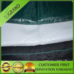 Garden Weed Control Mat Plastic Mesh Greenhouse Mulching Film pictures & photos