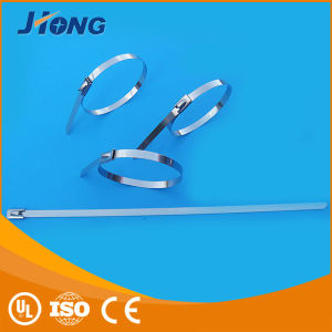 Fastening Stainless Steel Cable Ties pictures & photos