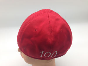 100% Polyester Red Headwear Cap 6 of Panel (CPA_31079) pictures & photos