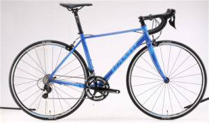 Frc 83, Roadbike, Alloy. 22sp pictures & photos