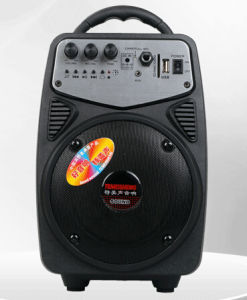 Portable Speaker with SD Card Slot and HiFi Bass Vibration Speaker for Outside Using Q2 pictures & photos