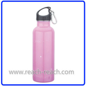 Travel Flask Stainless Steel Water Bottle (R-9016) pictures & photos