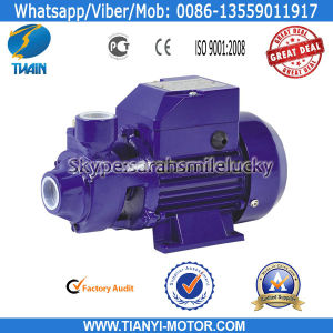 Qb70 Electric Water Pump Motor Price