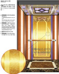 Passenger Elevator (ip 615) pictures & photos