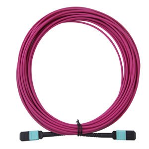 MPO Plus-MPO Plus Optical Fiber Jumper pictures & photos