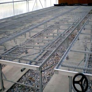 Galvanized Seedbed Wire Mesh Panels, Seed Bed for Greenhouse pictures & photos