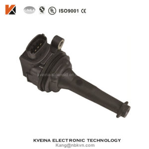 Volvo Ignition Coils Fs3010 pictures & photos