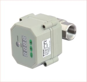"1/2"", 3/4"", 1"" Inch Electric Motorized Stainless Steel Control Water Valve with Timer pictures & photos"