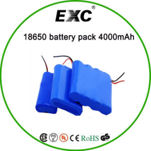 China Best-Selling 18650 Lithium Ion Battery 3.7V 4000mAh pictures & photos
