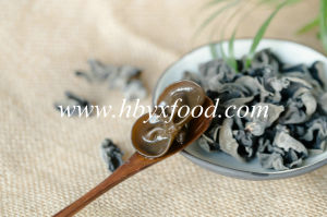 Edible Dried Tree Ear Black Fungus in 1kgs Pack pictures & photos