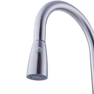 CSA Certificate Stainless Steel Pull-Down Faucet with Spray Shower Head pictures & photos