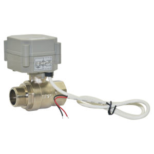 CE/RoHS Mini 3/4 Inch Motorized Flow Brass Ball Valve (T20-B2-A) pictures & photos