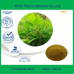 Solomonseal Rhizome Extract Powder for Sale pictures & photos