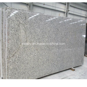 Building Material Stone Tiles Azul Platino Granite Slab pictures & photos