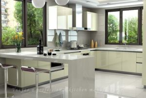 Competitive Lacquer Wooden Kitchen Fruniture/Kitchen Cabinet (S064)