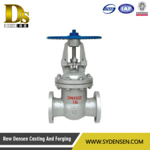 API Gate Valve Apply to Chemical Usage pictures & photos