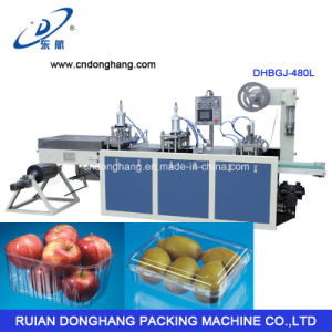 China Supplier of Fruit Tray Making Machine pictures & photos